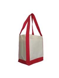 Non-woven Shopping Bag (20)